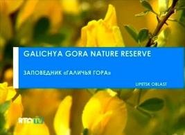 2011-zapovednik-galichja-gora-01