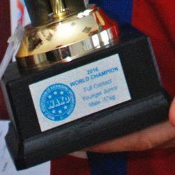 Кубок чемпиона мира по кикбоксингу в руках победителя